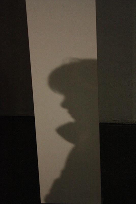 Schattendasein ?