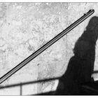 Schattenläuferin