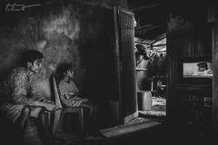 Schattenparker ~ Sumba Barat