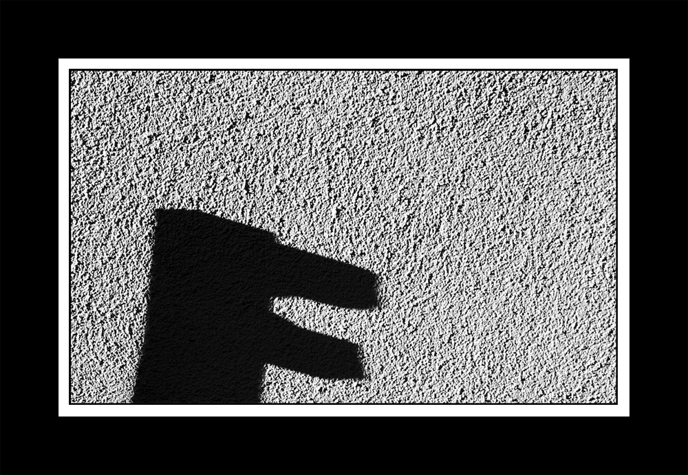 Schattenschnabel