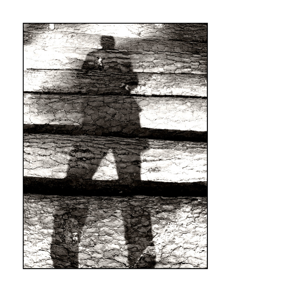 Schattenseiten [# 01]