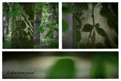 Schattenspiel im Havelland