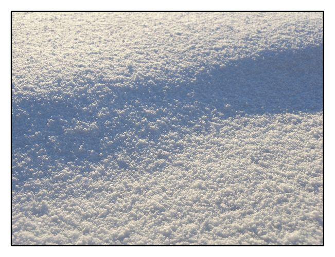 Schattenspiel im Schnee