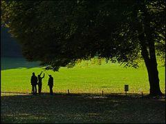 Schattenspiel im Wenkenhof