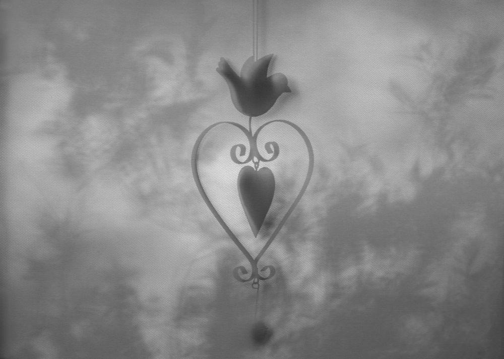 Schattenspiel mit Herz