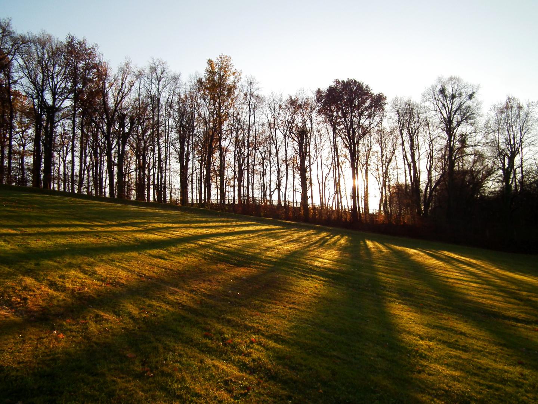 Schattenspiele im Advent