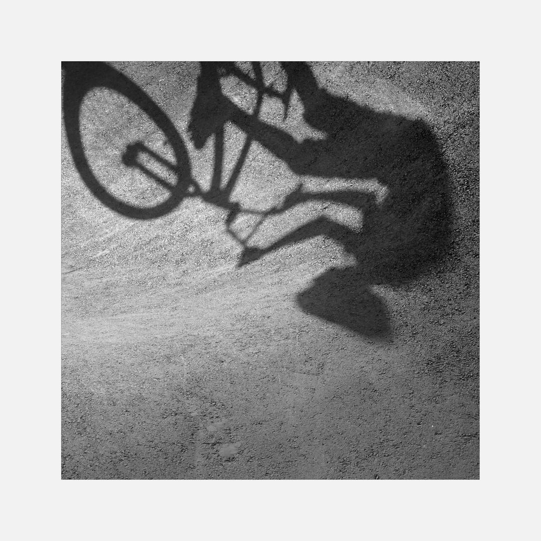Schattenspiele im Bikepark IV