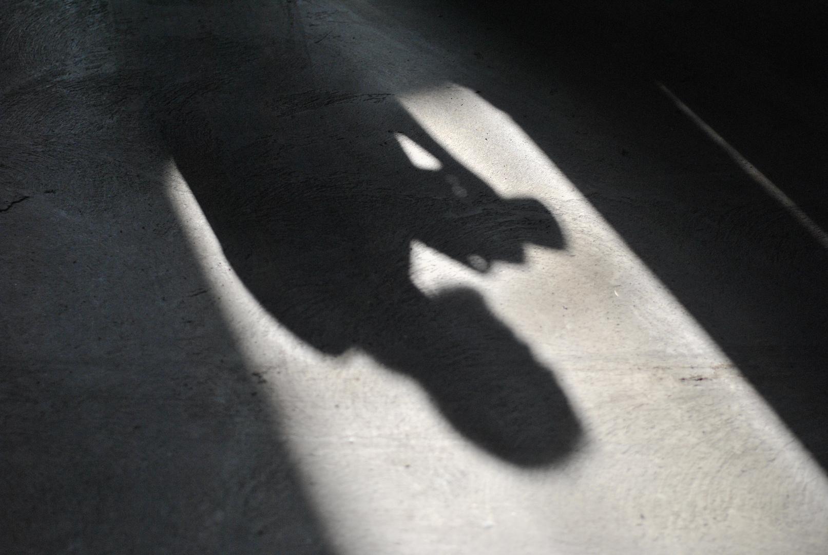 Schattenwelt
