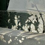 Schattenwelten