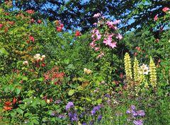 Schau an der schönen Gärten Zier...