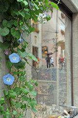 Schaufenster in Rothenburg ob der Tauber
