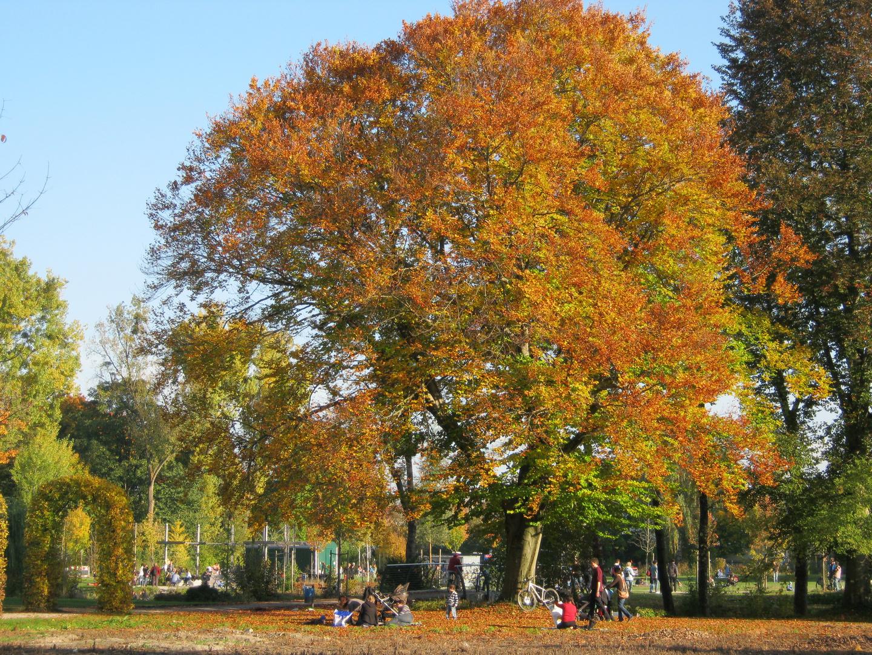 Schaugärten . München 10
