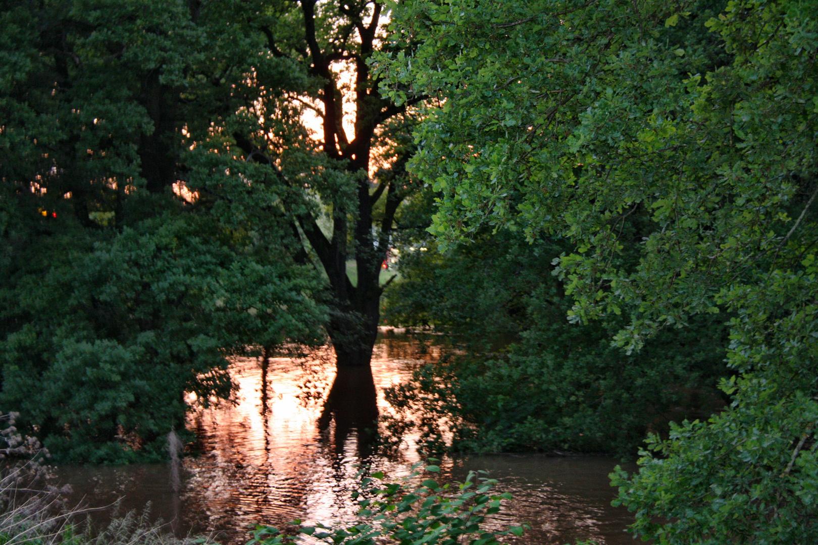 Schaurig schön beim Hochwasser 2013