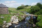 Schaurig-schönes Dartmoor