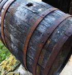 Schaustück -bei der Trotte vom Weingut Köpfer in Grunern