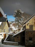 Sche... Winter 2010