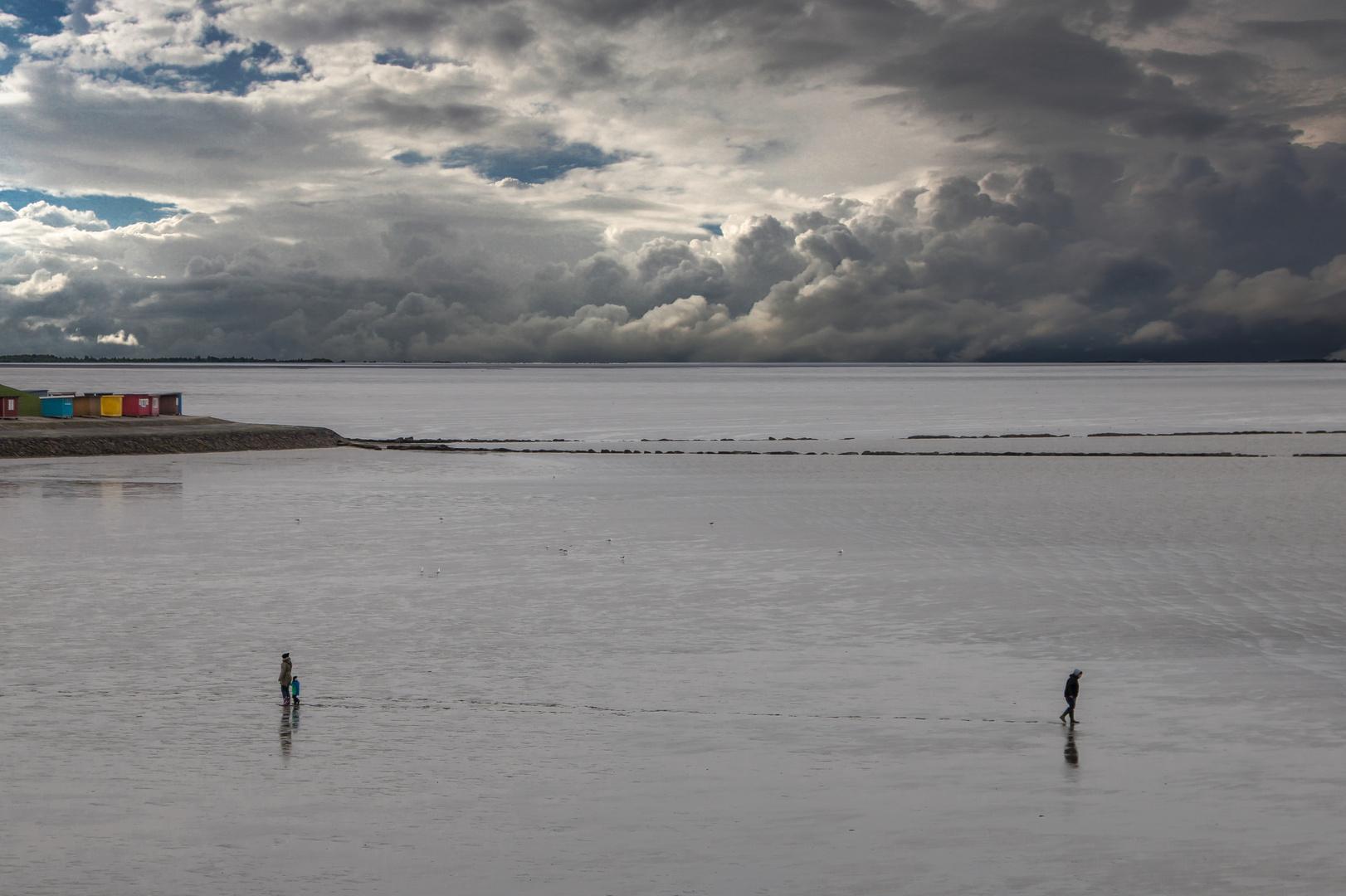 Scheidung im Wattenmeer? - Divorve in the Wadden Sea?