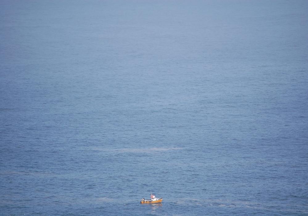scheinbare Immortalität des Meeres