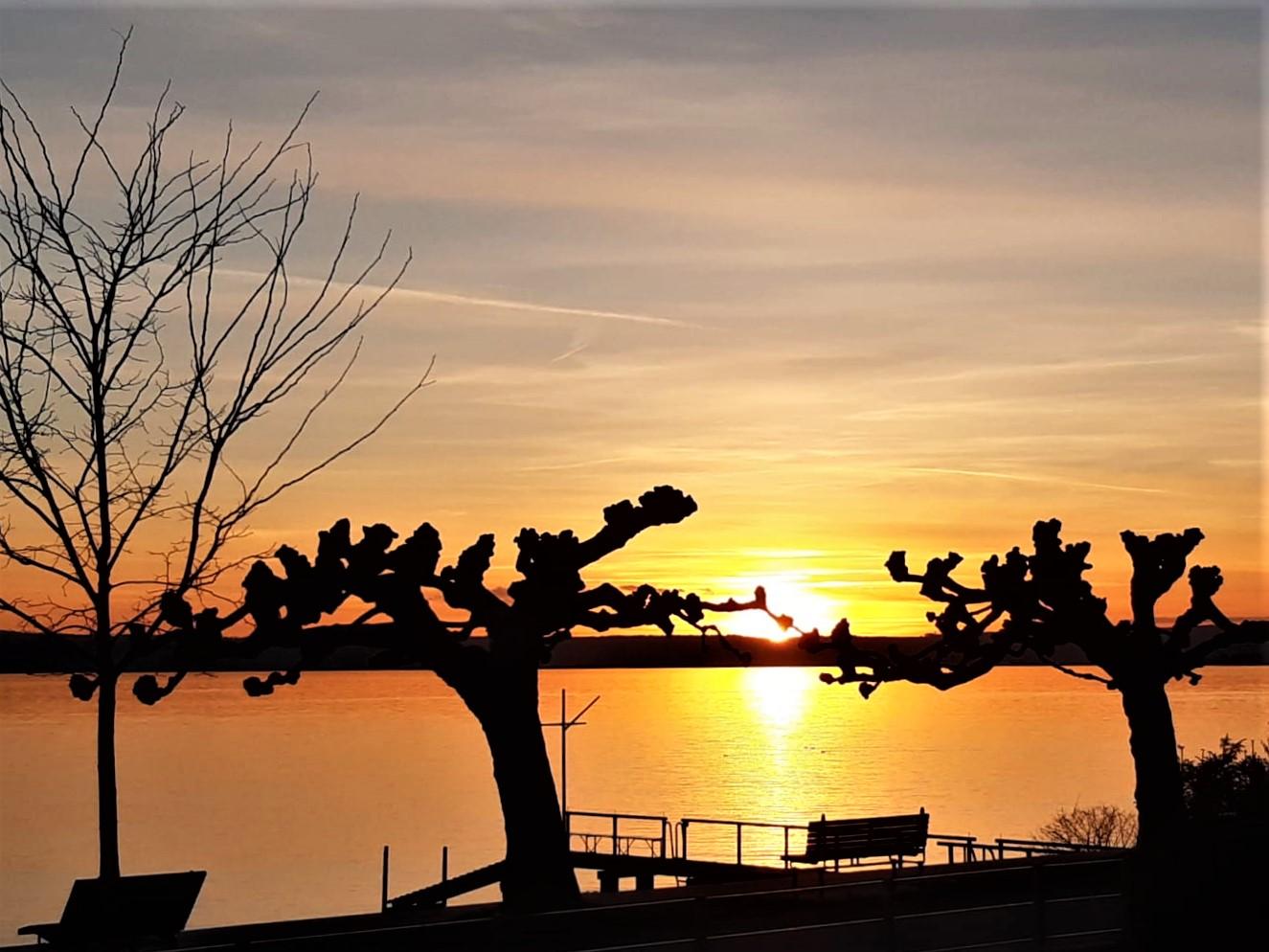 """""""Scherenschnitt"""" mit Sonnenuntergang"""