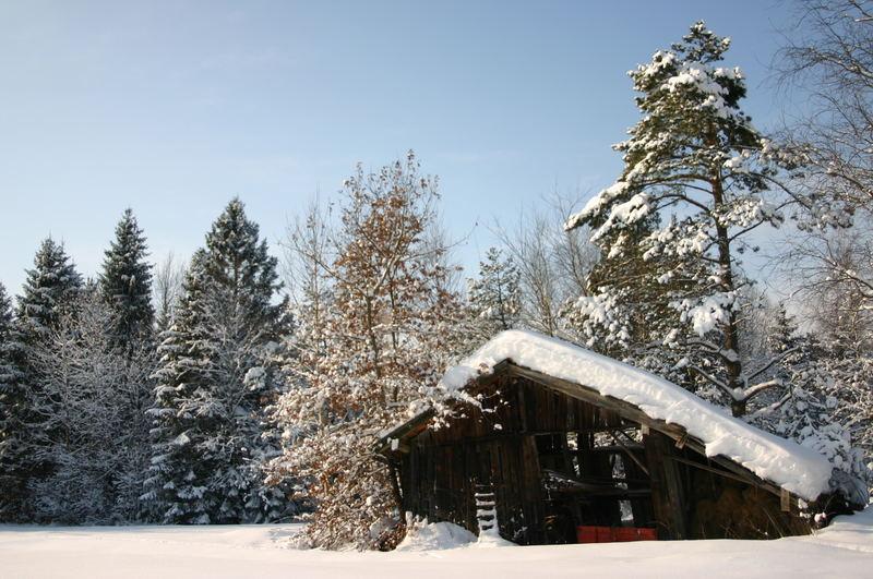 Schiefe Holzhütte