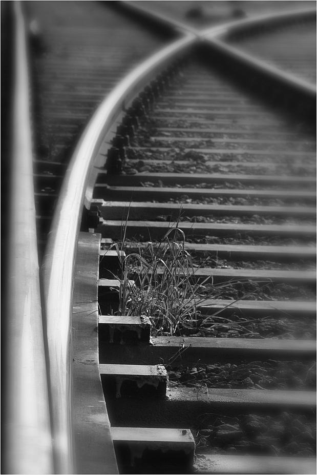 Schienen (3)