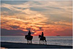 Schiff und Pferde