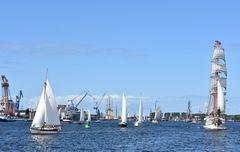 Schiffe zur Hanse Sail 2017