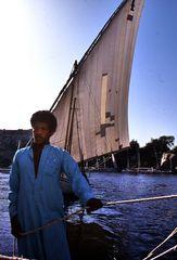 Schiffsführer - Überfahrt zur Kitchner-Insel