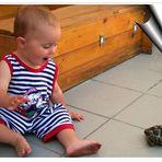 ...Schildkrötenalarm...