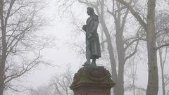 Schiller im Nebel