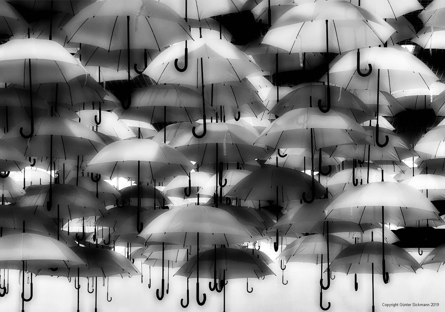 Schirmherren gesucht.