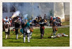 Schlacht um das Treuener Schloss