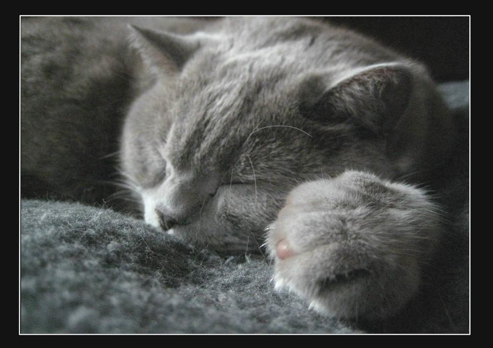 Schlafwetter