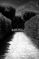 Schlag     Schatten