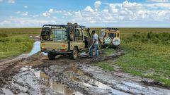 Schlam(m)assel in der Serengeti
