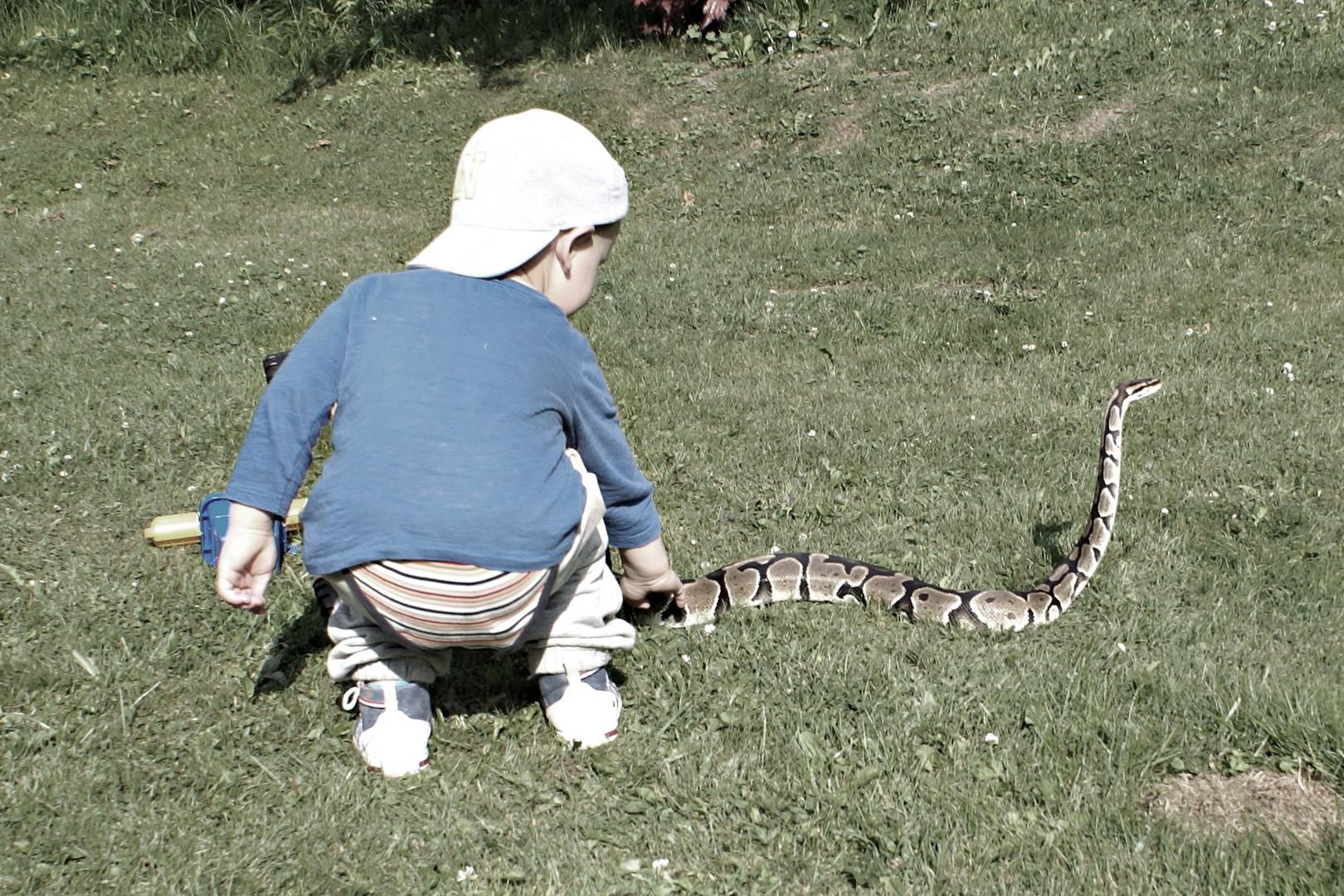 Schlangenbeschwörer