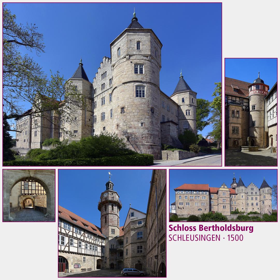 Schleusingen · Bertholdsburg
