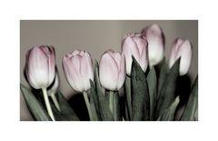 schlichte Blüten