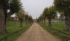 Schloss Alden Biesen V