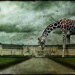 Schloss ...