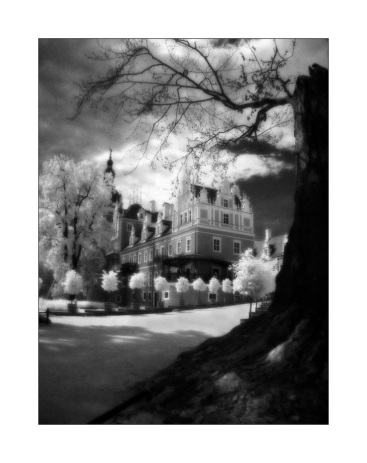 - Schloss Bad Muskau II -