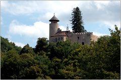 ... Schloss Birseck ...