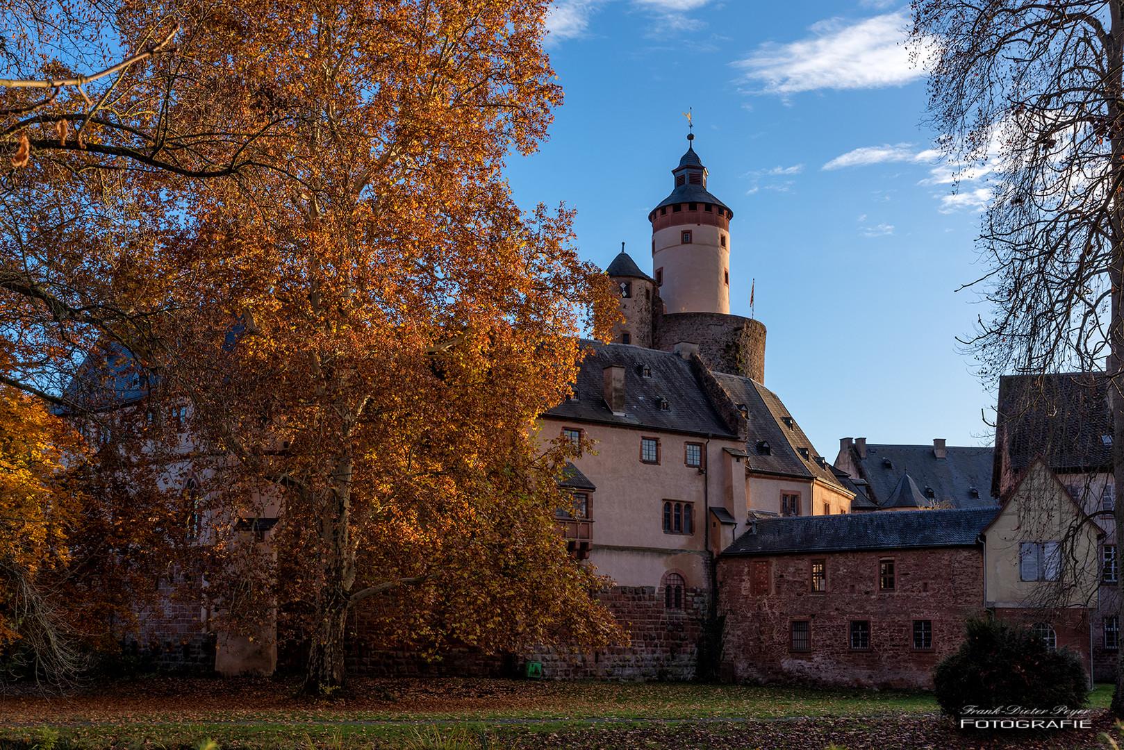 Schloss Büdigen