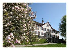 Schloss Bürgeln im Frühling