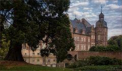 Schloss Darfeld