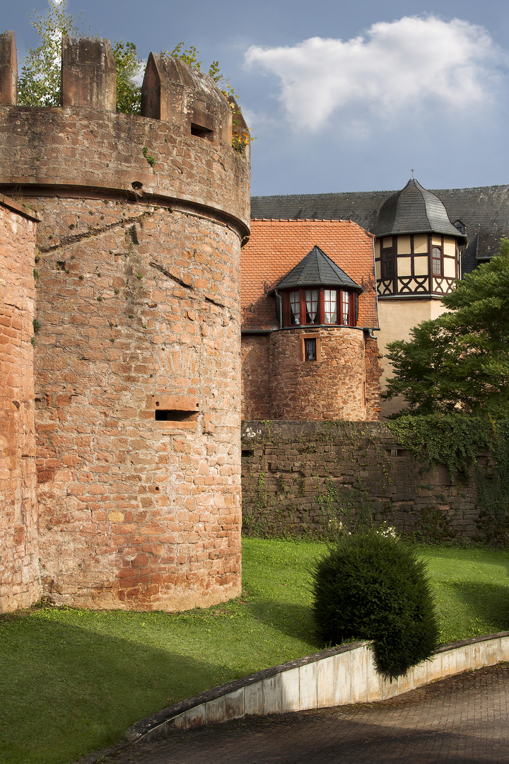 Schloss Detail