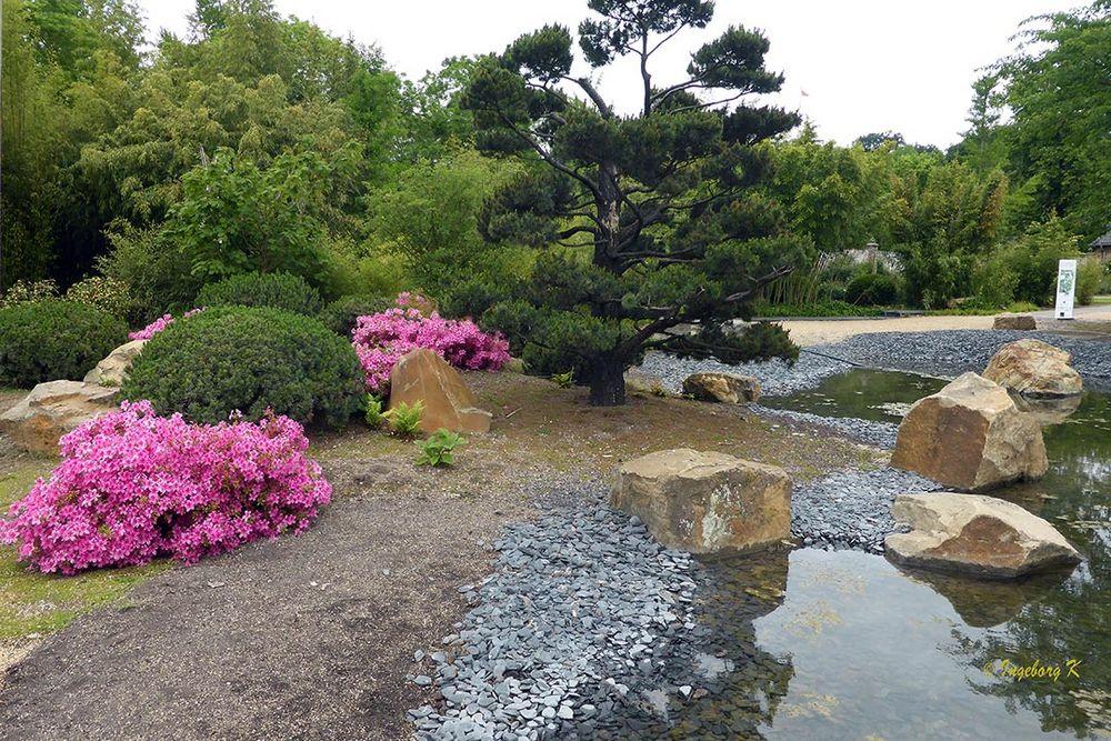 Schloss-Dyck Japanischer Garten