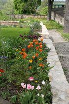 Schloss Garten