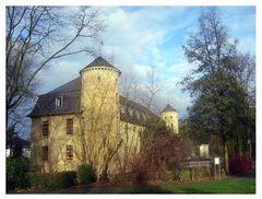 Schloss Horneburg im November 2009