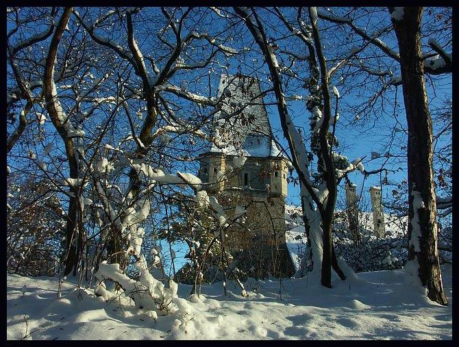 Schloß im verschneitem Wald